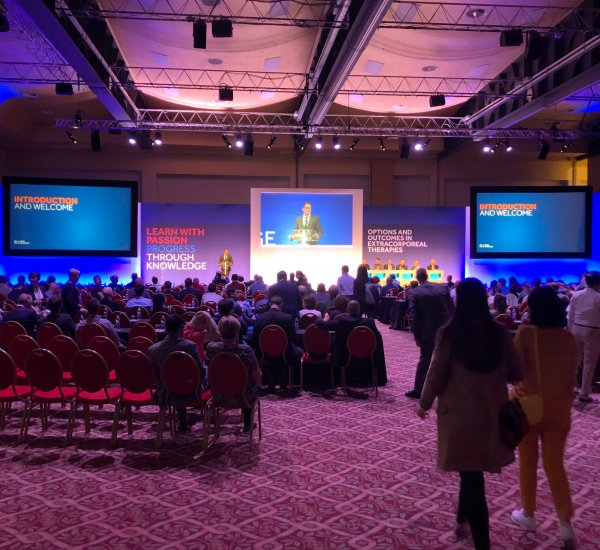 Global MedTech Leader – Options & Outcomes 2019